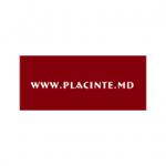 PLĂCINTE.MD Logo