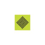 POLINA HASANOVA Logo