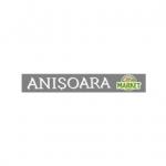 MARKET ANISOARA Logo