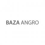 BAZA ANGRO Logo
