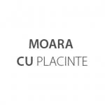 MOARA CU PLACINTE Logo