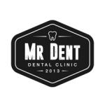 MR. DENT Logo