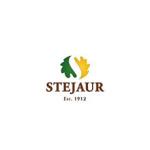 SALON DE MOBILĂ STEJAUR Logo