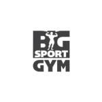 BIG SPORT GYM Logo