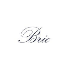 BRIOMEDTEST Logo
