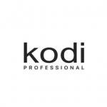 KODI PROFESSIONAL MOLDOVA Logo