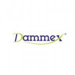 DAMMEX Logo