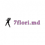 7 FLORI.MD Logo
