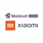 MI-MOLDCELL Logo