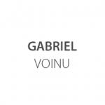 GABRIEL VOINU Logo