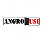 ANGRO UȘI Logo