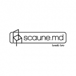 SCAUNE.MD Logo