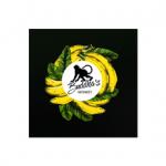 BUDDHAS MONKEY Logo