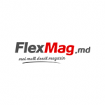 FLEXMAG.MD Logo
